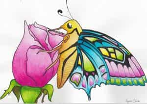 Aquarell - Schmetterling